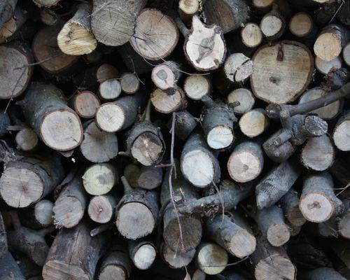 Wood8x10
